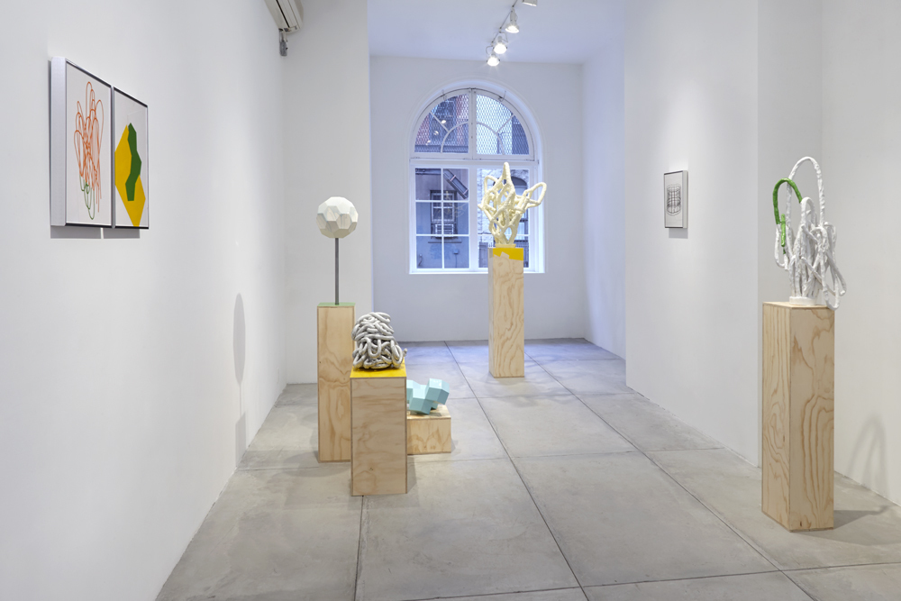 Paul Sacaridiz, Installation view at Jane Hartsook Gallery. 2016