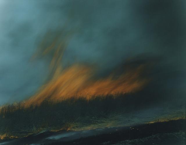 "Rinko Kawauchi, 'Untitled, from the series ""Ametsuchi""', 2013, PRISKA PASQUER"
