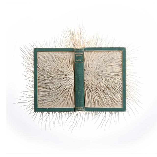 Barbara Wildenboer, 'Dark Paradise I,' 2013, Seager Gray Gallery