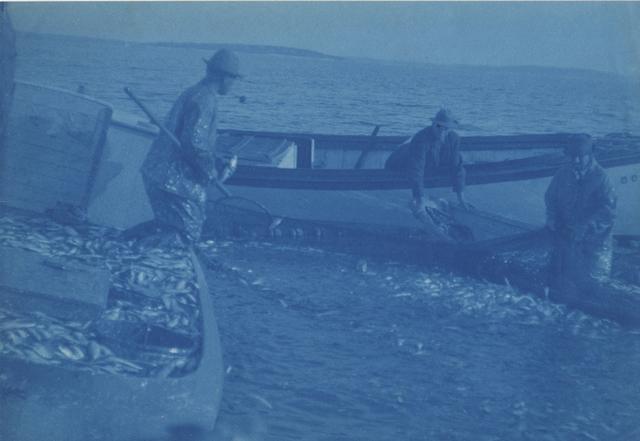 Margaret Watkins, 'Untitled (fishing)', c. 1910's, Photography, Cyanotype, Robert Mann Gallery
