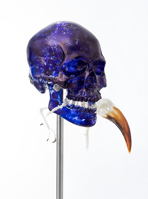 Jan Fabre, 'Skull with Von der Decken's Hornbill', 2018, Templon
