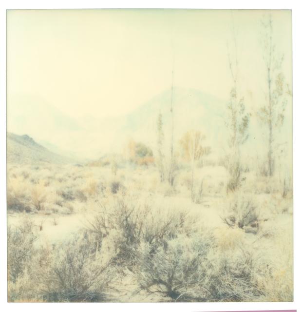 Stefanie Schneider, 'Wastelands', 2003, Photography, Digital C-Print based on a Polaroid, not mounted, Instantdreams