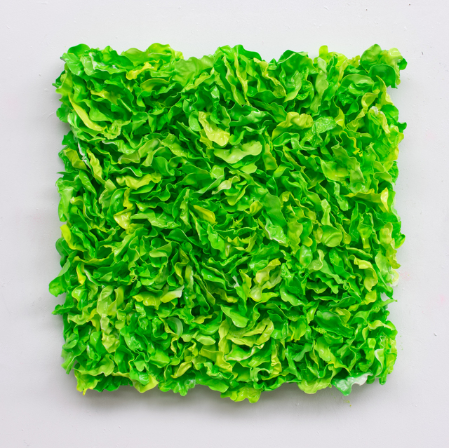, 'Lettuce mixed,' 2019, Rademakers Gallery