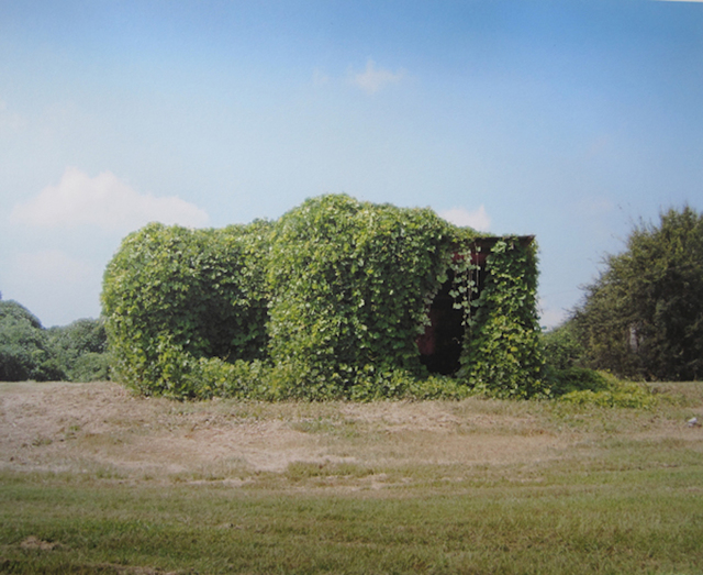 William Christenberry, 'Kudzu Devouring Building, near Greensboro, Alabama, 2004', 2004, Jackson Fine Art