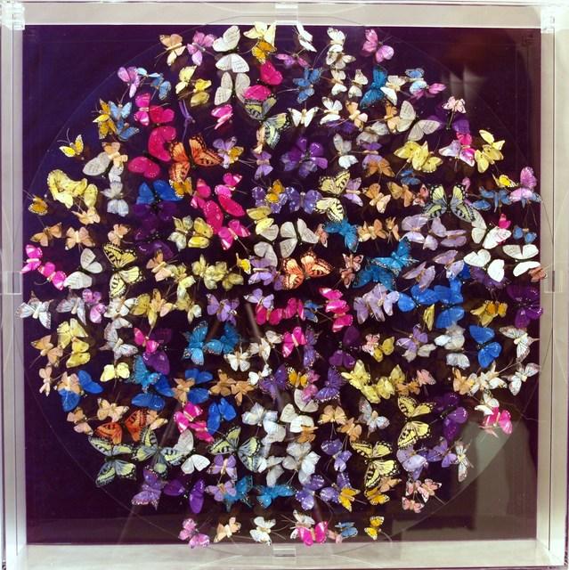 , 'Butterflies, purple,' 2016, Tanya Baxter Contemporary