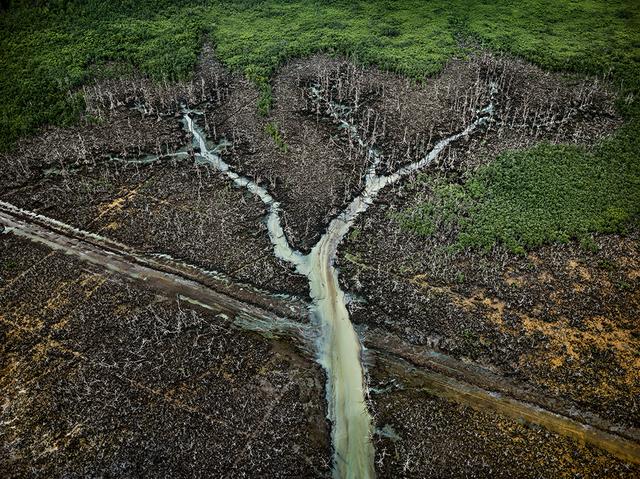 , 'Oil Bunkering #2, Niger Delta, Nigeria,' 2016, Nicholas Metivier Gallery