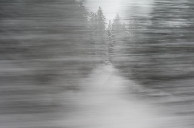 , '18.03.2013 / 17:24:20,' 2013, ammann//gallery