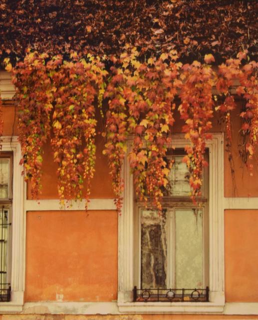 Ella Veres, 'Vivaldi's The Four Seasons: Fall', 2016, Fountain House Gallery