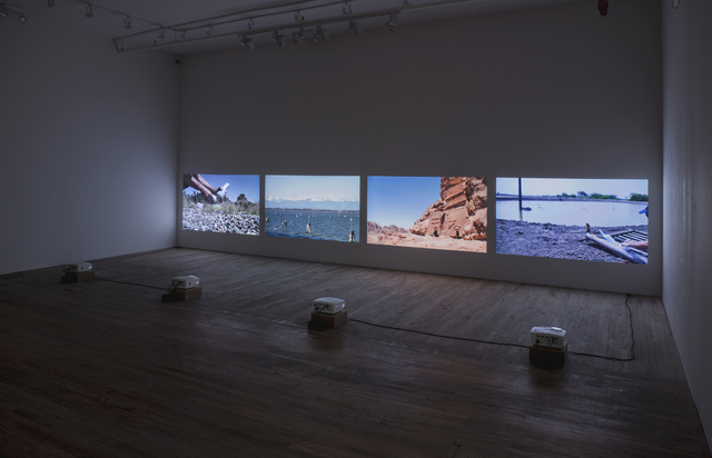 , 'Invisible Disparities,' 2011-2014, Postmasters Gallery