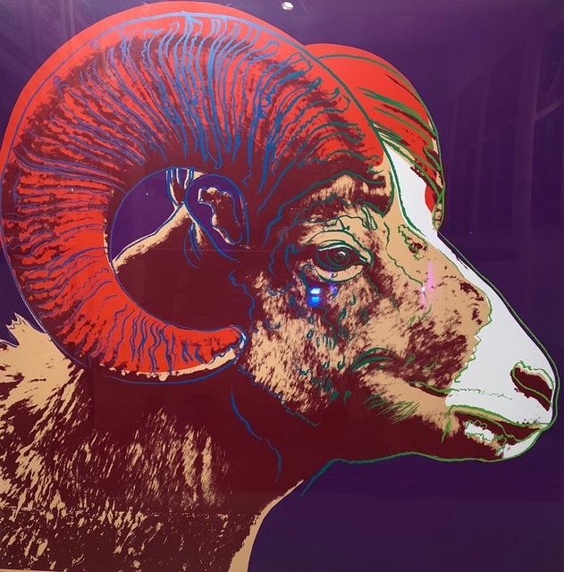 Andy Warhol, 'Bighorn Ram TP (FS. II 302)', 1983, Revolver Gallery