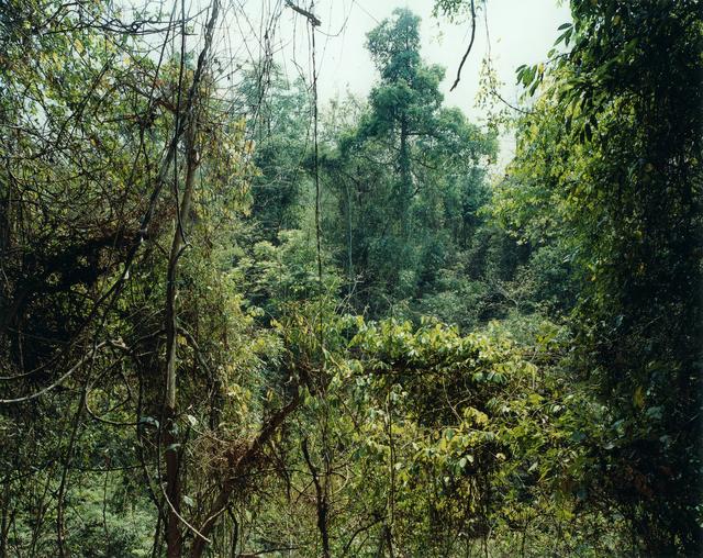 , 'Paradise 10 (Xi Shuang Banna),  Yunnan Province, China,' 1999, Monica De Cardenas