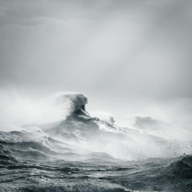 Rachael Talibart, 'Poseidon Rising', 2016, Sohn Fine Art