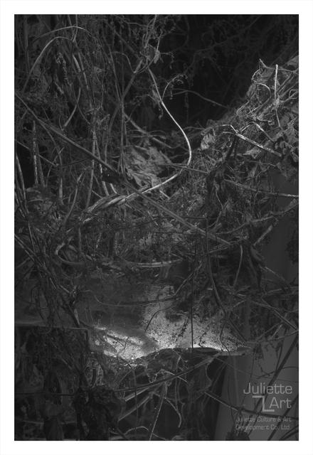 , 'The Light of Dark Night No.30,' 2013, Juliette Culture and Art Development Co. Ltd.