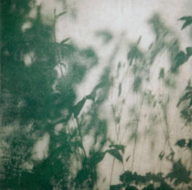 , 'Walled Garden IV,' 2014, The Fine Art Society