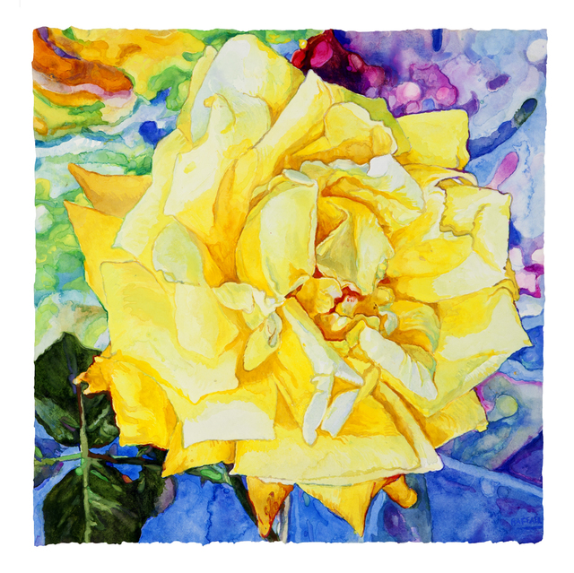 , 'Vincent's Rose,' 2017, Nancy Hoffman Gallery