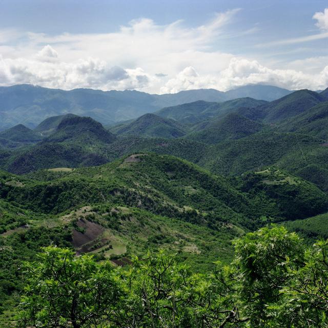 , 'Oaxaca, Mexico – Mountain Foliage,' 2010, InLiquid