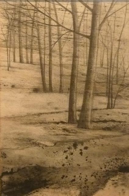 Marika Vicari, 'In quel bosco nero presto fioriranno i bucaneve', 2014, Galleria Punto Sull'Arte