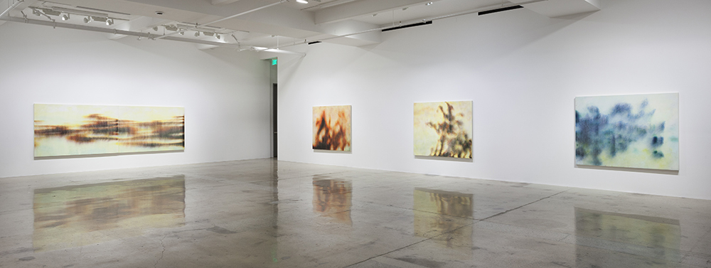 After Sonora, Installation view, Steve Turner, June 2016