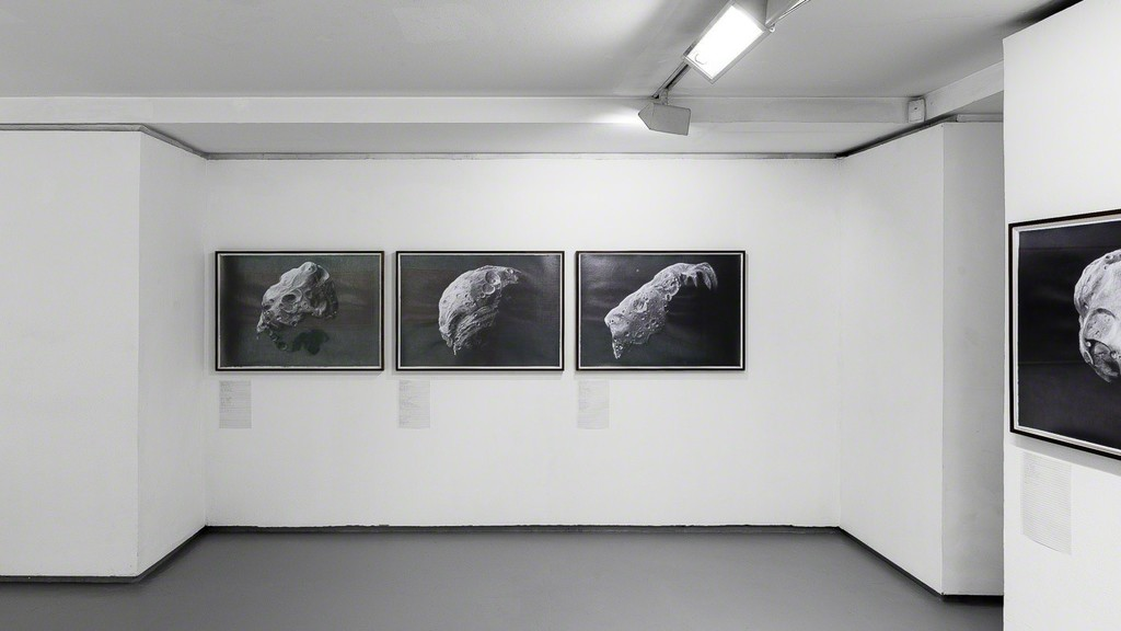 """Exhibition view, """"Albedo"""" a special project by Nicolas Moulin. © Photo: Grégory Copitet - Courtesy of the artist and Valentin, Paris."""