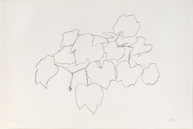 Ellsworth Kelly, 'Grape Leaves I', Mary Ryan Gallery, Inc