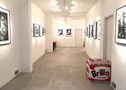 David Hill Gallery