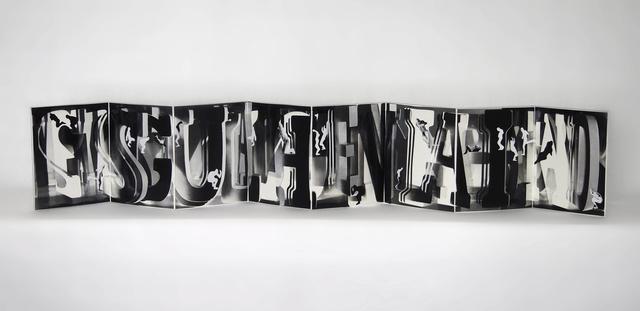 , 'Sotto Voce,' 2016, Amos Eno Gallery
