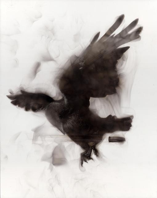 Steven Spazuk, 'Dodging the Bullet', 2018, Adelson Galleries