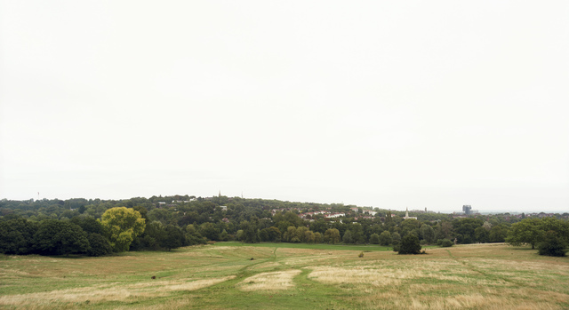 , 'Hampstead Heath, London,' 2008, Danziger Gallery