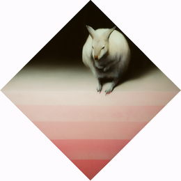 , 'Wallaby with inverted pyramid,' 2014, Sullivan+Strumpf