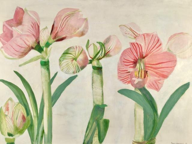, 'Studies of Amaryllis Flowering,' 1986, Jenna Burlingham Fine Art