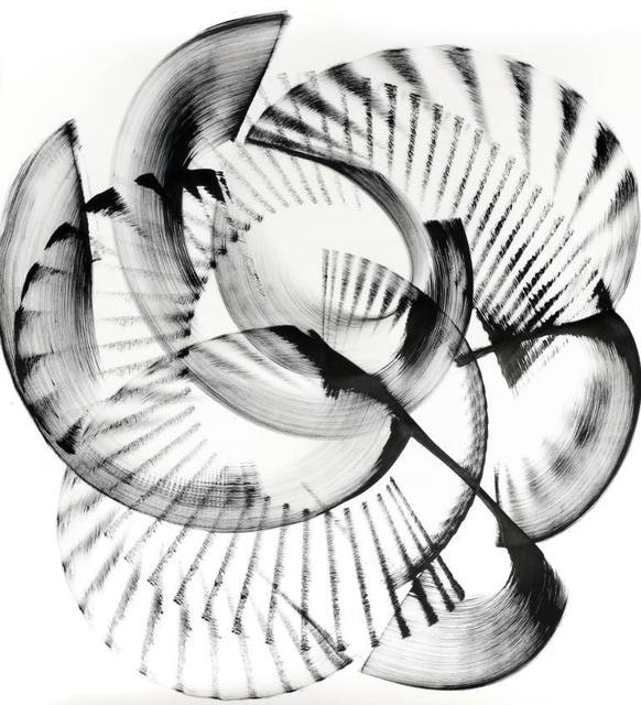 , 'Encephalartos relictus,' 2016, Saatchi Art