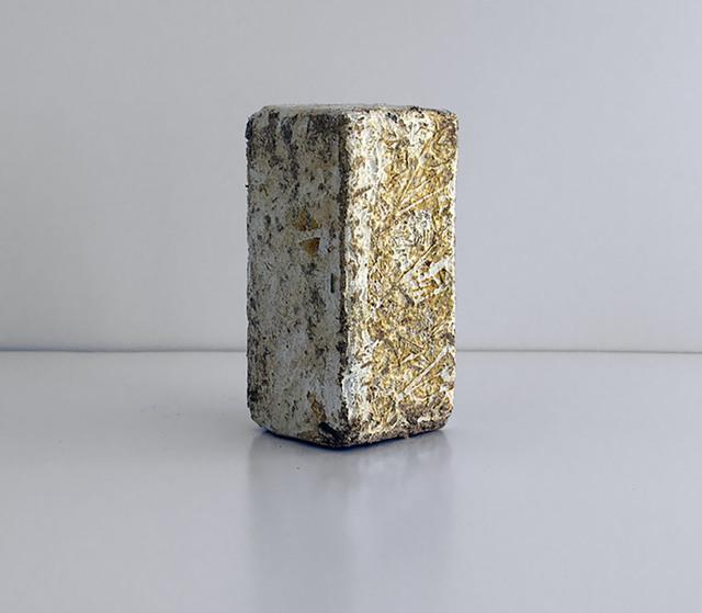 , 'Fungal Brick,' , Artadia