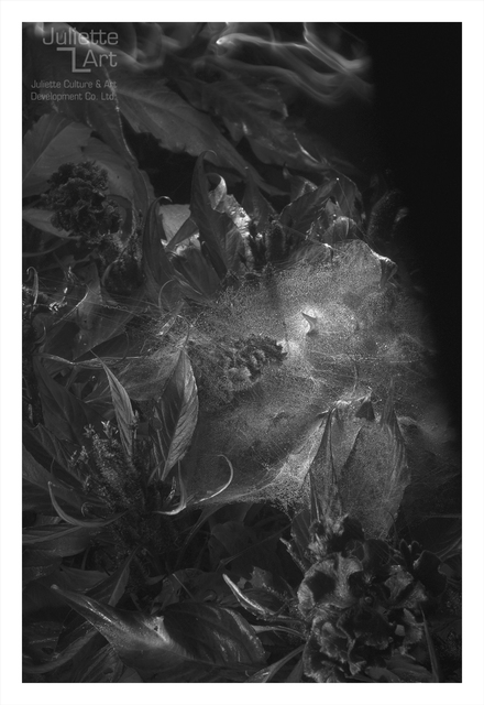 , 'The Light of Dark Night No.19,' 2013, Juliette Culture and Art Development Co. Ltd.