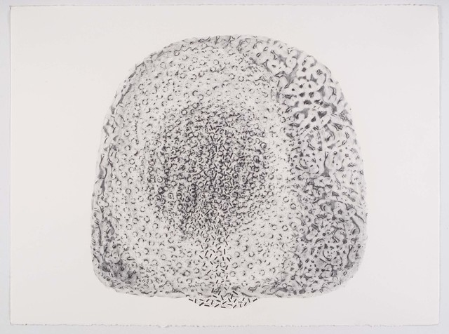 Manisha Parekh, 'Memories and Places 7', 2009, Nature Morte