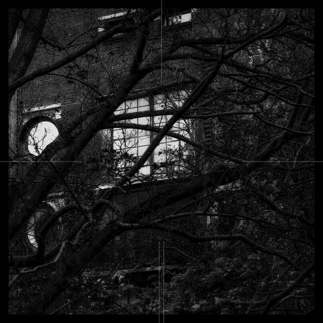 , 'Dusky Garden 006,' 2016, Zilberman Gallery