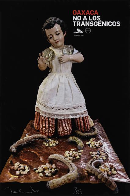 Francisco Toledo, 'Niño Maíz Gusanos (Boy Corn Worms)', 2014, Sin Título Gallery