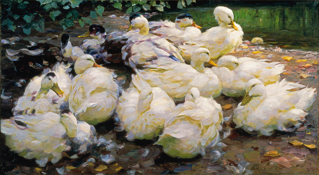 , 'Moulting Ducks,' ca. 1900, Frye Art Museum
