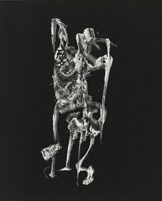 Frederick Sommer, ''Anatomy of an Atlas'', 1985, Sotheby's