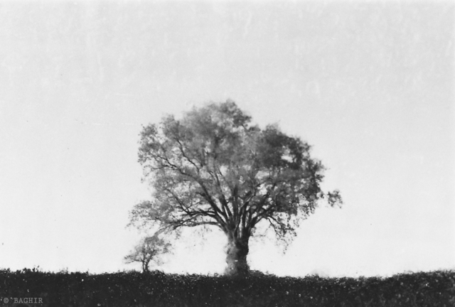 , 'PN # 467-619,' 2014, Photo12 Galerie