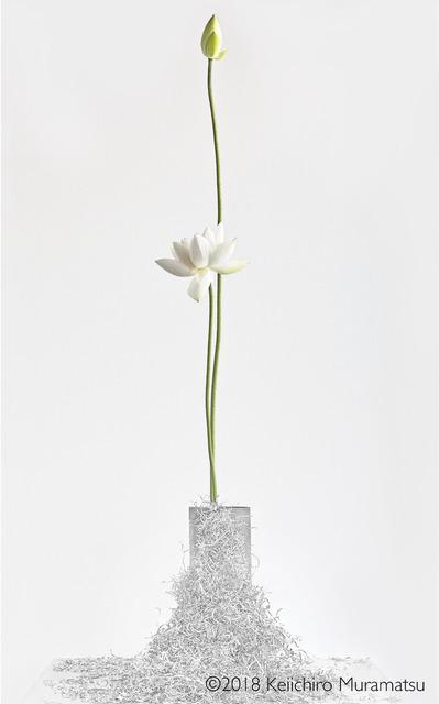 , 'Lotus 9,' 2018, Galerie Marie-Robin
