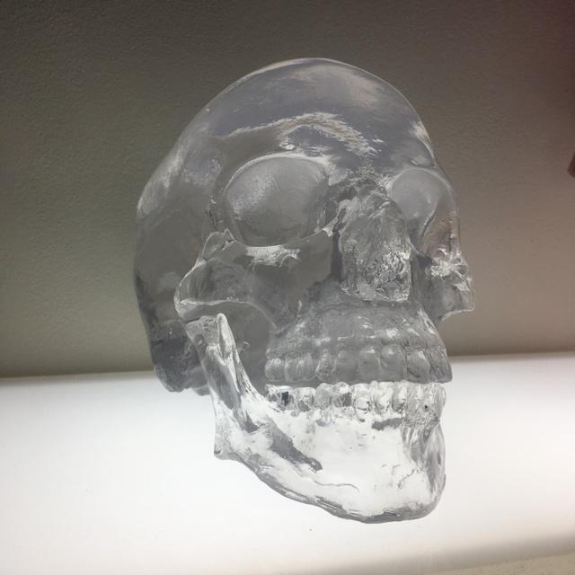 ", '""Clear Skull"",' ca. 2019, Parlor Gallery"