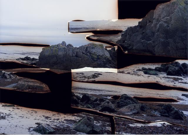 Dafna Talmor, 'Untitled (JE-12121212-2)', 2015, Flowers