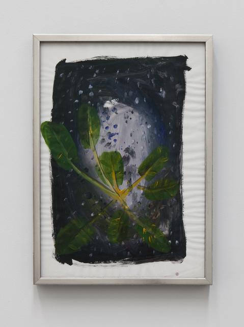 , 'Plant en Ruimtevaart #8 ( Plant & Space #8),' 2016, Tatjana Pieters