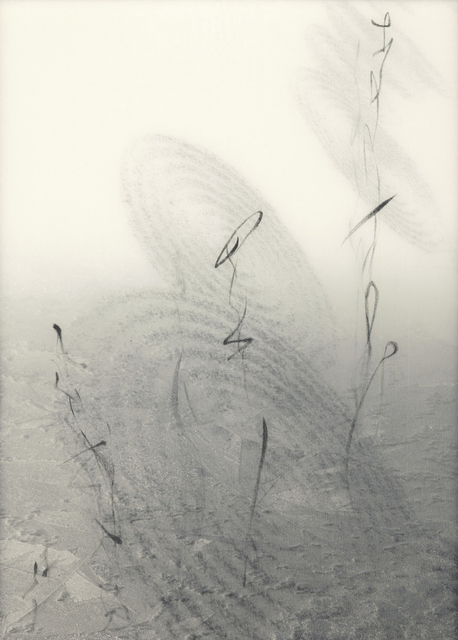 Chaco Terada, 'Calligraphy of the Soul II', 2010, Mixed Media, Archival pigment print on layers of silk organza with sumi ink and mineral pigments, Valley House Gallery & Sculpture Garden