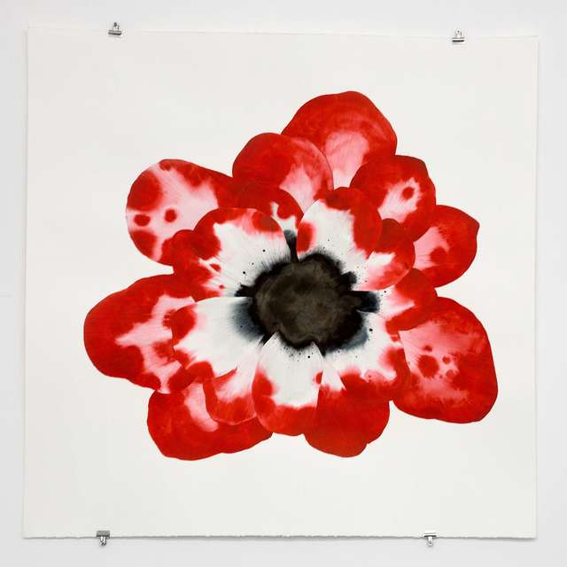 Stephen Doherty, 'Large Red Flower ', 2017, SHOWstudio