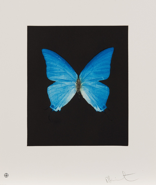 Damien Hirst, 'Providence, from Butterfly Etchings', 2009, Phillips