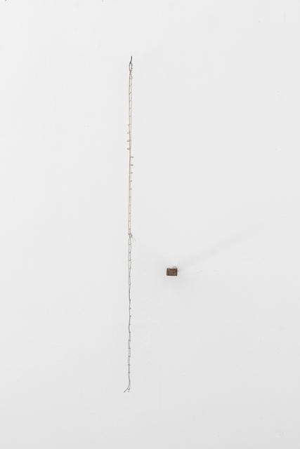 Milena Rossignoli, 'In Scala', 2019, Ana Mas Projects