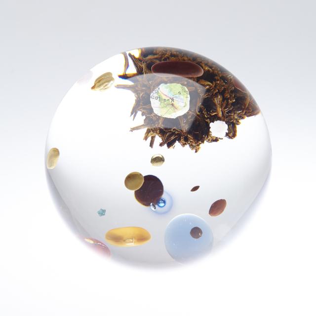 , 'Beans Cosmos (Tama),' 2016, Tomio Koyama Gallery