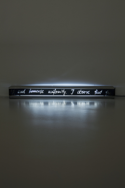 , 'Footnote (...I observe that the pleasure...),' 2013, Meyer Riegger