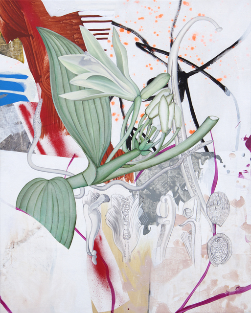 , 'Orchidaceae,' 2019, Gallery Jones